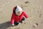 Beach Bebe