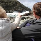 Penguin Island - Bruny Island