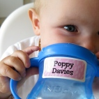 Cheeky Poppy