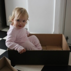 In the box!