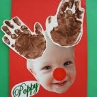 Reindeer Poppy