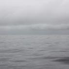 Oily seas