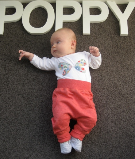 Poppy - 12 Weeks