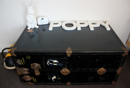 Poppy's Great Grandfather's Chest