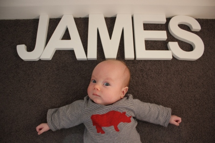 James - 12 Weeks Old