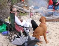 Beach Feeding Time