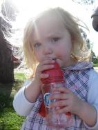 Poppy - Nutgrove Park
