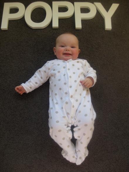 Poppy - 6 months old