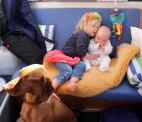 Maisy, Pops & James