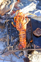 Crayfish on the barbie