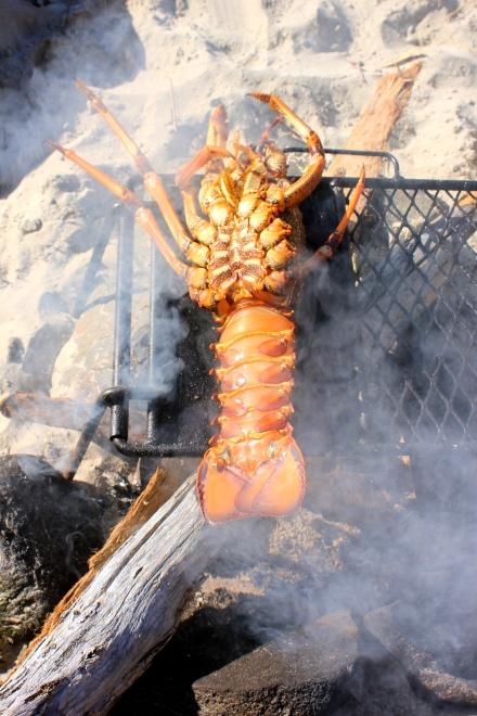 Brett's Crayfish