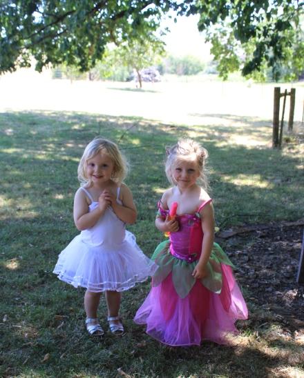 Tree Fairies