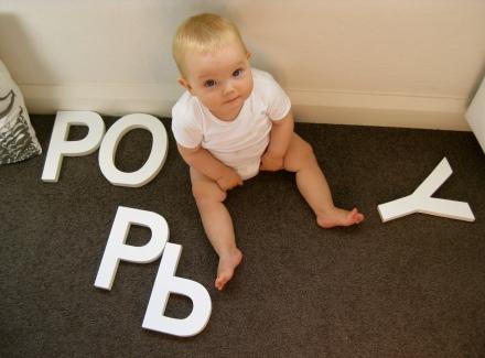 Poppy - 9 Months Old