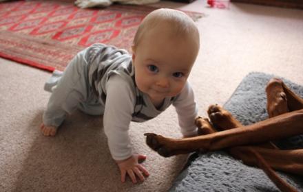 James Crawling