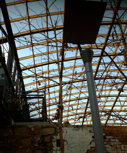 The IXL Atrium