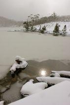 Lake Dobson Mt Field