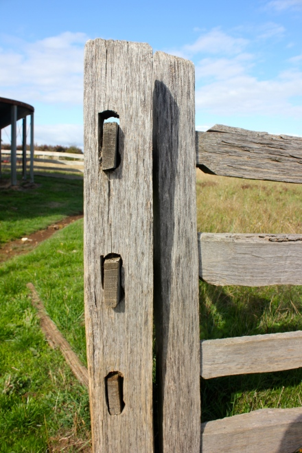 Post & Rail Fence