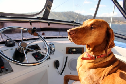 Captain Maisy