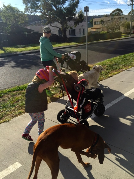 Three Dogs, Two Prams, Three Children, Two Mums