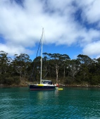 Mistraal at Partridge Island