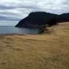 Fossil Cliffs