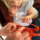 Crayfish lesson