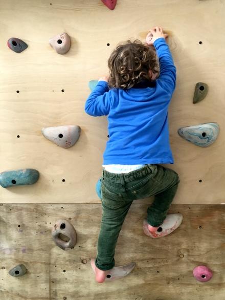 Sam's Climbing Wall